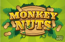 mb monkeynuts